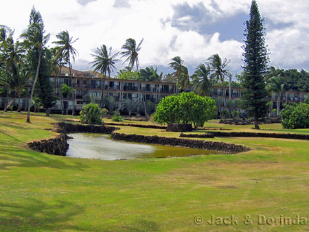 Prince Kuhio Park from East